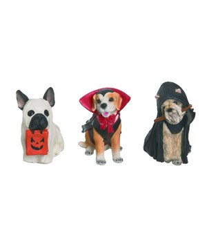 Res Trick or Treat Dog 3 Asst
