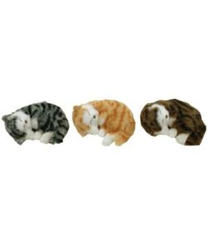 FUR CATS 6 in. ASST. 6/BX