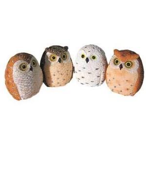 OWLS 4 ASST COLORS 12/BX