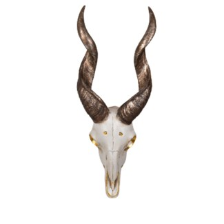 Antelope Head Wall Decor