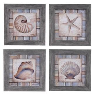 BEACH SHELL 1,2,3,4