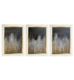 SILVER FOREST I,2,3