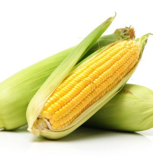 CORN (PACK OF 9 PIECES)