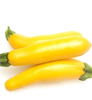 YELLOW SQUASH (PACK OF 2 PIECES)