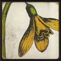 EB Vintage Color Flower III