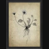 EB Flowers