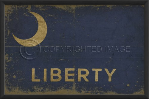 EB Fort Moultrie Liberty Flag