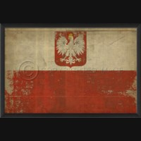 EB Polish Flag