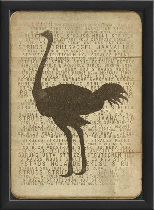 EB Ostrich Silhouette