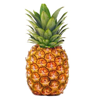 LARGE PINEAPPLES (1 PIECE)