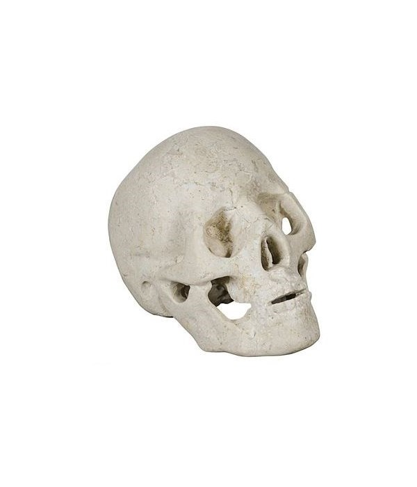 Skull, White Marble