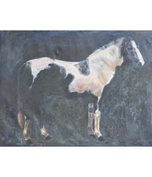 White/Black Horse