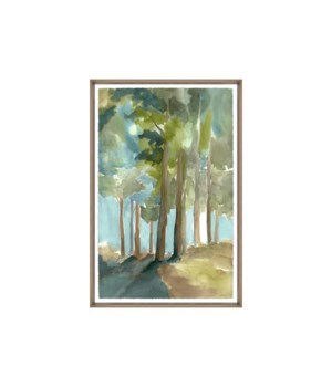 24x36 Sunshine Through a Forest III, Glass Framed, Frame 36PUN2622
