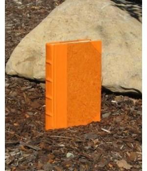Colors Colletion-Orange