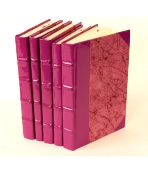 Colors Colletion-Purple