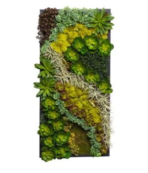 Succulent Wood Frame Center