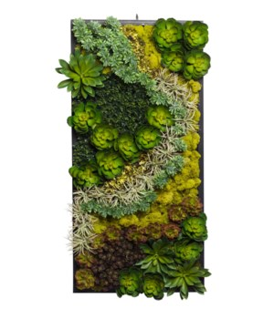 Succulent Wood Frame Right Side