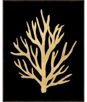 40x50 Academy Sea Life I, Gild Gold, Frame 36P1705