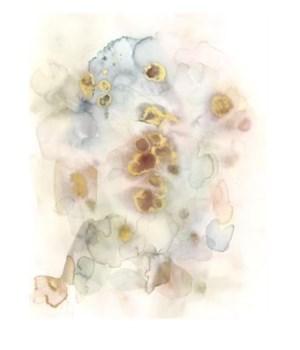 24x30 Graceful Flutter I, Plexi Box Art