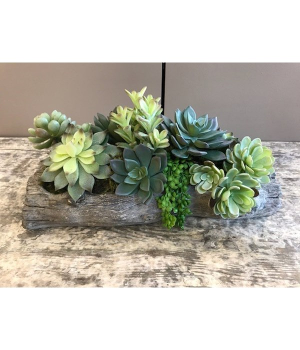 Small Concrete Wood Log with Mixed Succulents