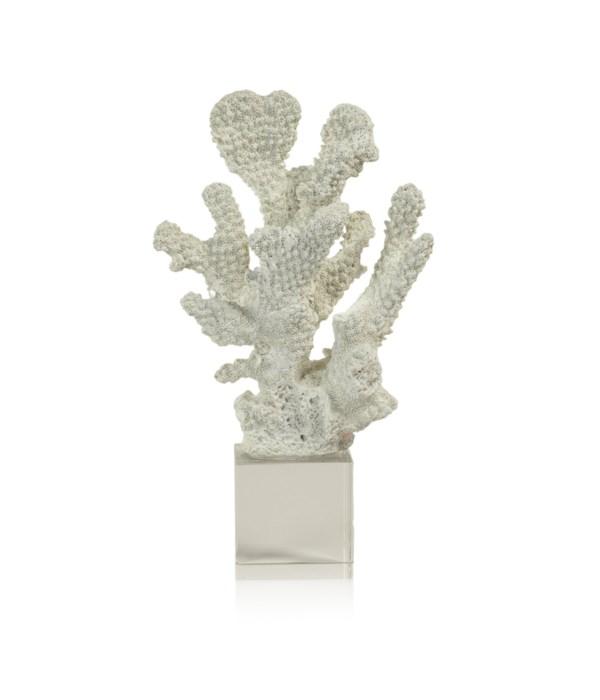 White Coral on Acrylic Base, Design A