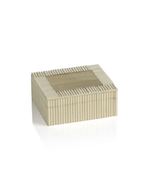 White Bone Chips and Brass Box