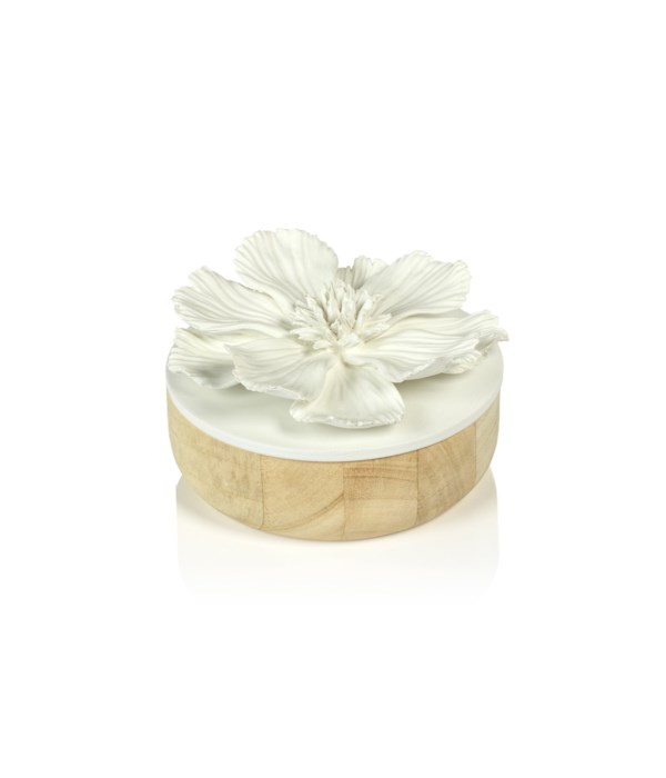 Cosmos Porcelain and Natural Wood Flower Box, White, Large