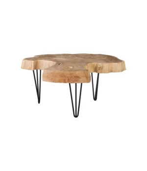 Bleached Slice Coffee Table, Iron Legs