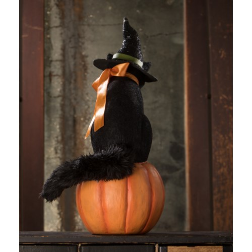 Black Cat Witch on Jack O'Lantern