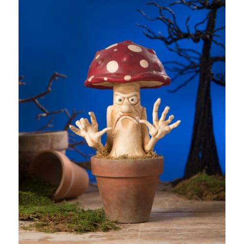 Mad Mushroom
