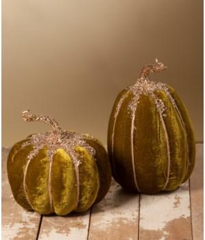 Olive Velvet Pumpkin 2/A