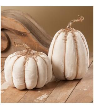 White Velvet Pumpkin 2/A