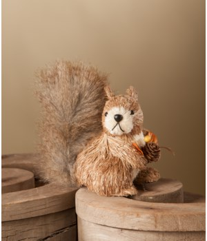 Baby Squirrel With Pine Cones
