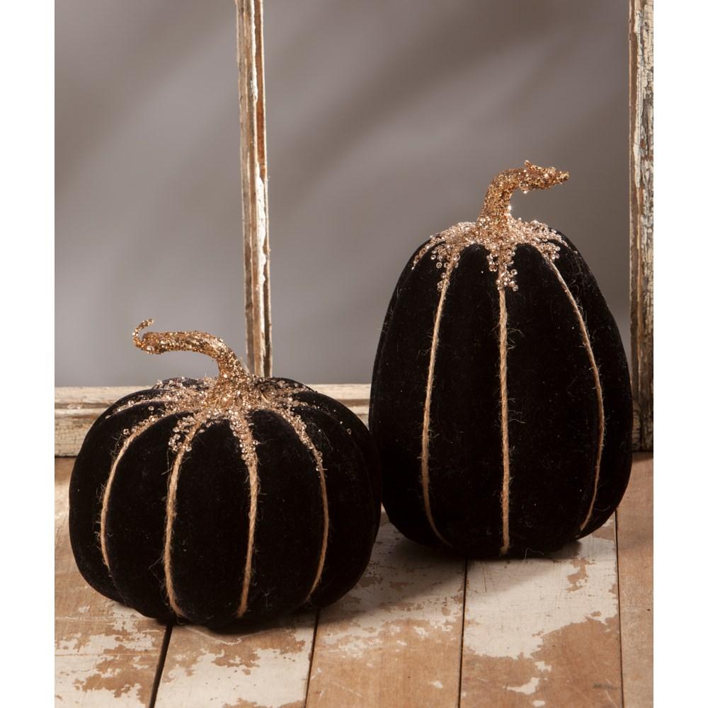 Black Velvet Pumpkin 2A