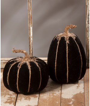 Black Velvet Pumpkin 2/A