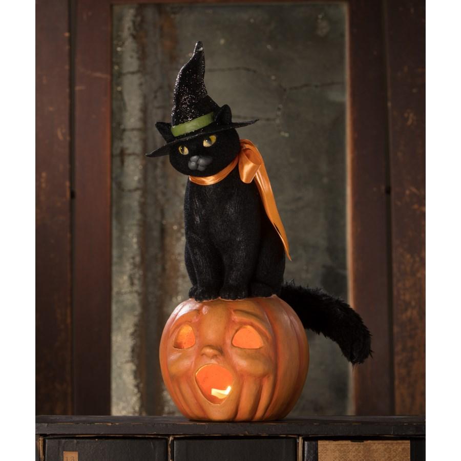 Black Cat Witch on Jack O'Lantern