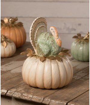 Elegant Turkey on Pumpkin