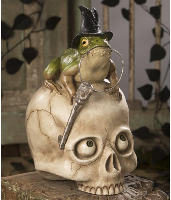 Toady On Skull