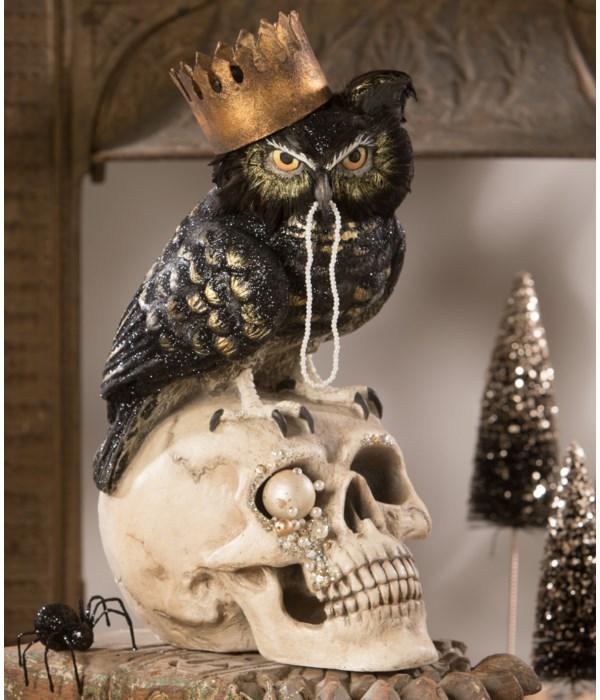 Sir Wingston Owl