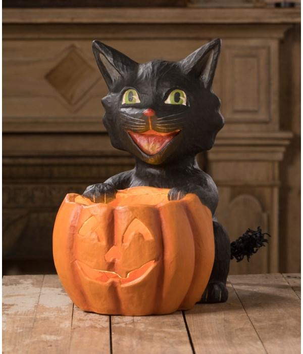 Cat's Got Your Pumpkin