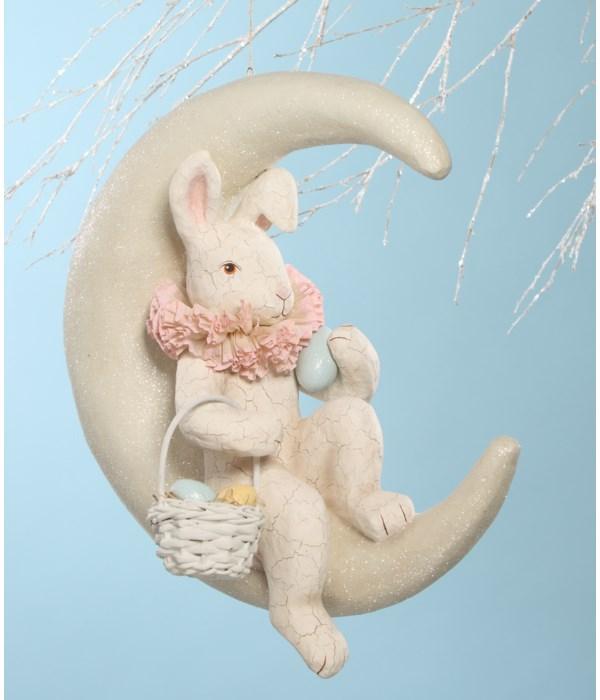 Bunny on Moon White