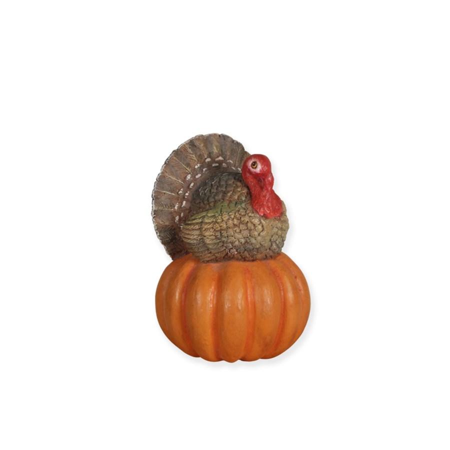 Turkey on Pumpkin