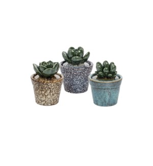 SUCCULENT STONE POT, 3 COLORS