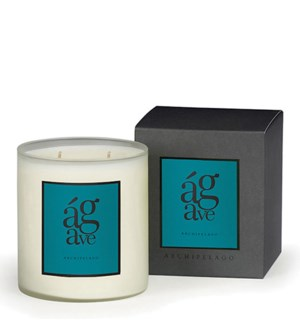 AGAVE BOXED CANDLE