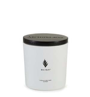 BIG SUR LUXE 2-WICK CANDLE