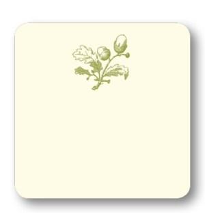 Acorn in Olive