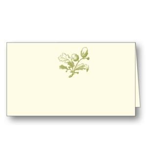 Acorn (Olive)