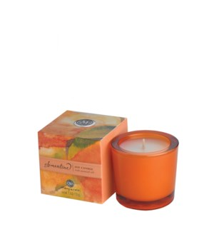 Clementine Soy Candle 2.5 oz