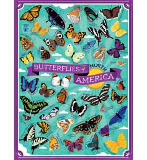 BUTTERFLIES OF AMERICA