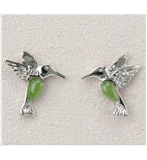 Dainty Hummingbird